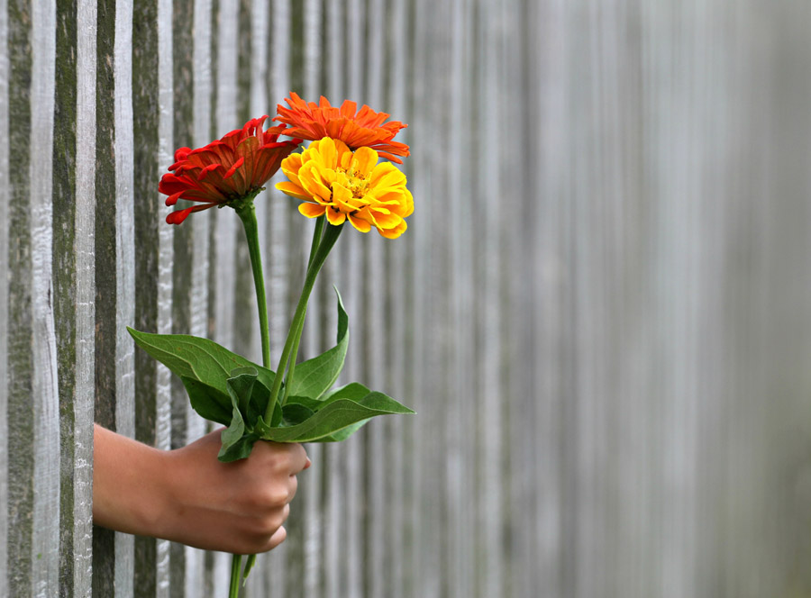失恋の恨みをプラス思考に変える3つの確認