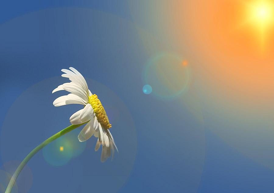 失恋で死にたくなる気持ちを乗り越えれば…必ず明るい未来が待っている!