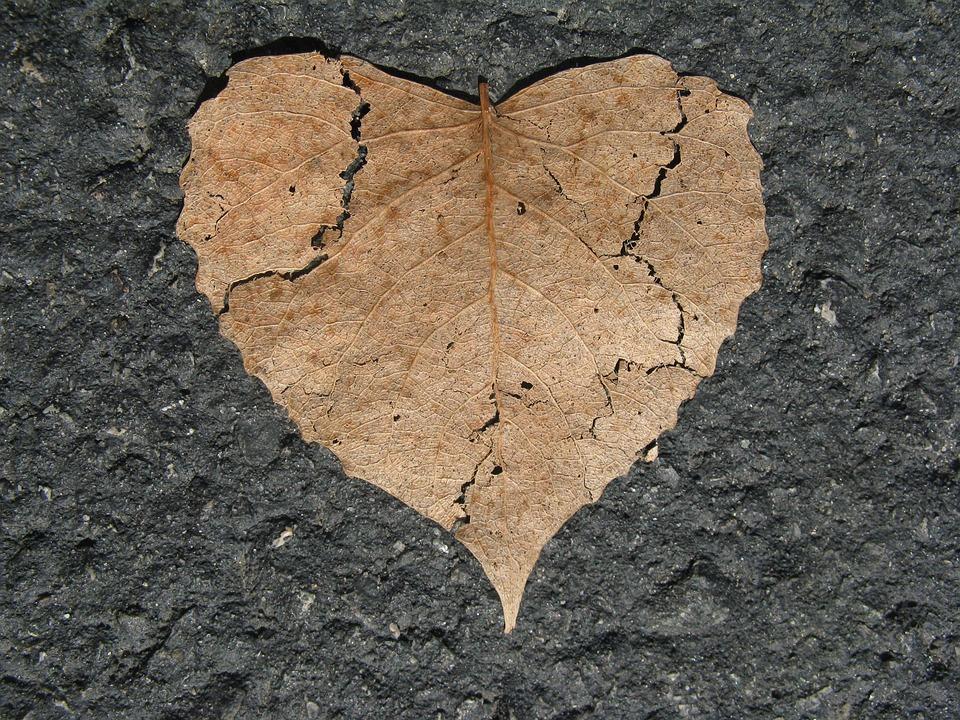 【失恋して涙が止まらないあなたへ。】失恋して辛いのはなぜ?